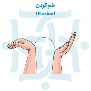 خم کردن مچ دست برای تمرینات ورزشی پس از درمان شکستگی مچ دست