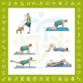 تمرینات ورزشی در درمان کمردرد