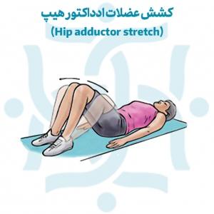 کشش عضلات ادداکتور هیپ در تمرینات ورزشی در درد مفاصل ساکروایلیاک
