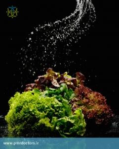 کاهو و سبزیجات تازه و بروکلی کلسیم ، تغذیه و سلامت استخوان