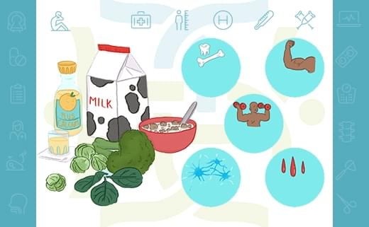 اصول سلامتی استخوان