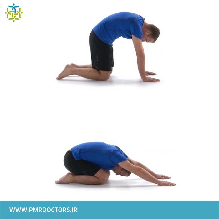 8.کشش عضلات کمر: